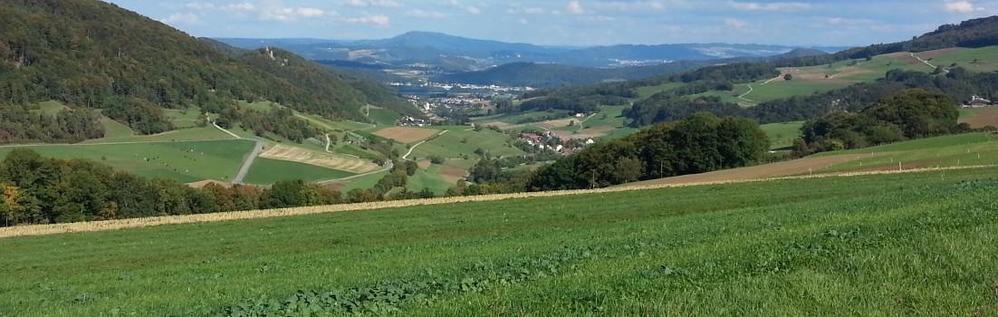 Schenkenbergertal