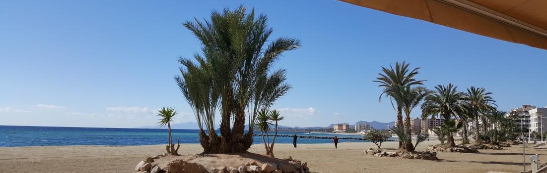 am Strand von Aguilas