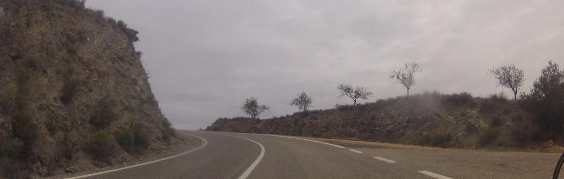 Mandelbäume kurz vor Bedarpass