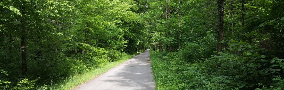 Radweg Eiken - Laufenburg