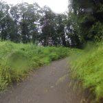 Rundfahrt um Aaremündung und Wasserschloss
