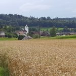 Ammerswil