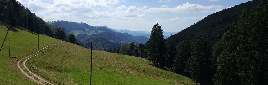 Vom Scheltenpass