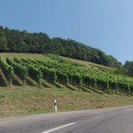 Rundfahrt über Staffelegg und den Rotberg