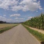 Rundfahrt entlang von Aare und Rhein, zurück über die Bürensteig