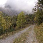 Zur Larschi Alp und zurück