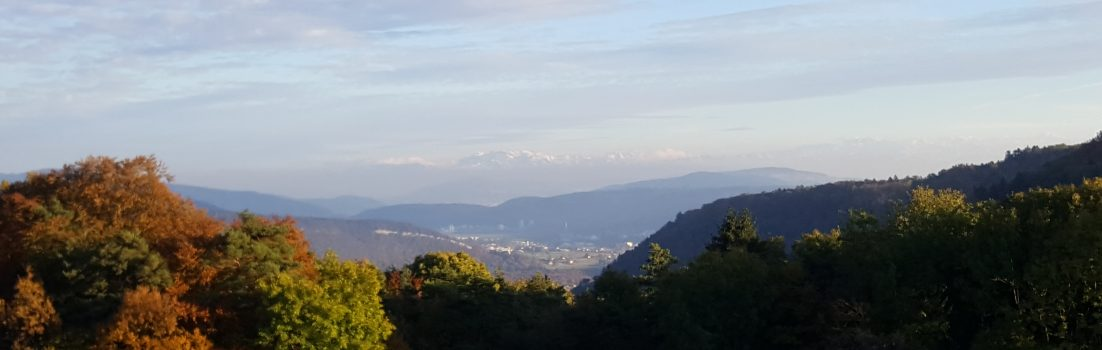 Alpenkamm vom Rotberg gesehen