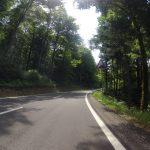 Am Weg zur Ampferenhöhe