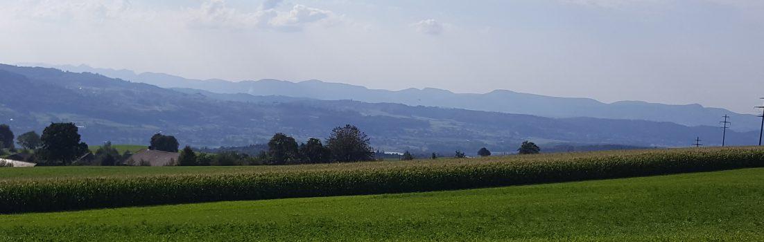 vom Niesenberg