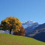 Herbstfahrt, erster Teil