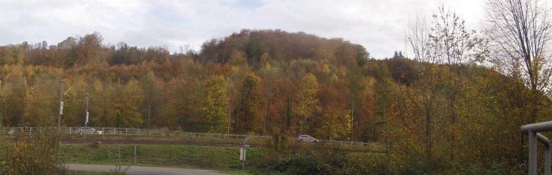 Habsburgerwald