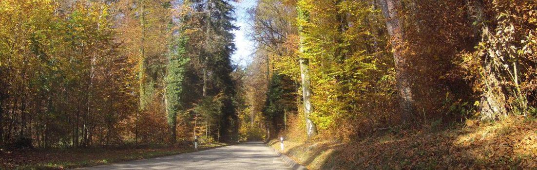 zum Rotberg
