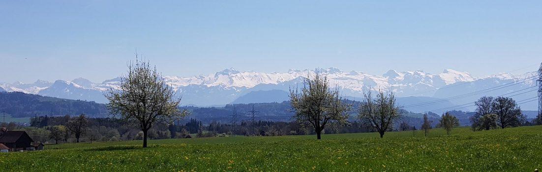 Alpenkamm im Frühling