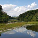 Rhein und Töss