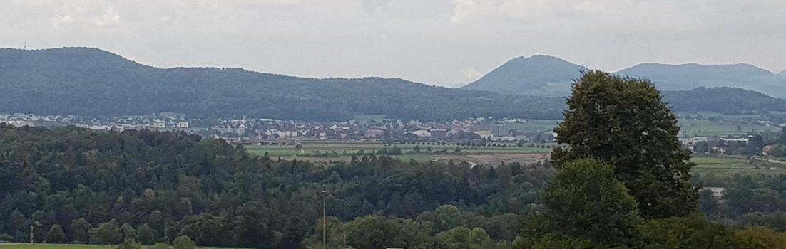 Blick ins Birrfeld