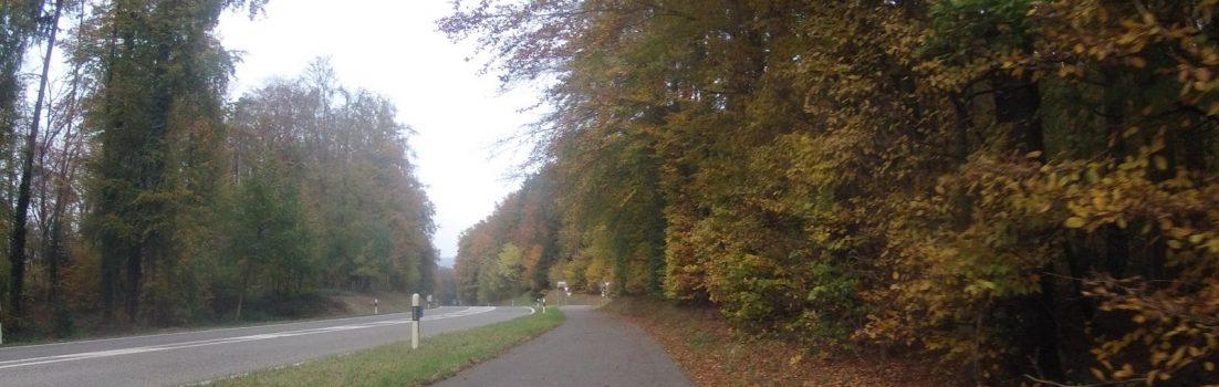 Leibstadt - Full auf dem Radweg