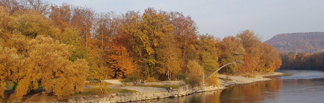 Herbstliches Aareufer
