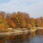 Herbstfarben an der Aare