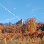 Schloss Habsburg über herbstlich farbenem Wald
