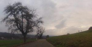 Radweg nach Etzgen