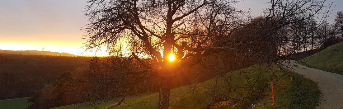 Sonnenuntergang oberhalb Auenstein