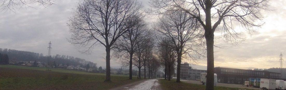 Radweg bei Hausen