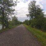 Radweg auf dem Aaredamm bei Schinznach-Bad