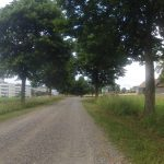 Wellenblech und alter Bernerweg