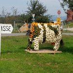 Reusstal - Sins - Bünztal