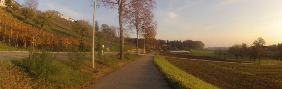 Radweg zwischen Niederrohrdorf und Busslingen