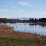 Naturschutzgebiet Reusstal