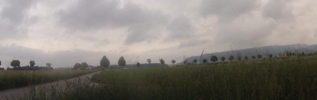 Birrfeld im Regen