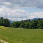 In der Nähe von Murgenthal