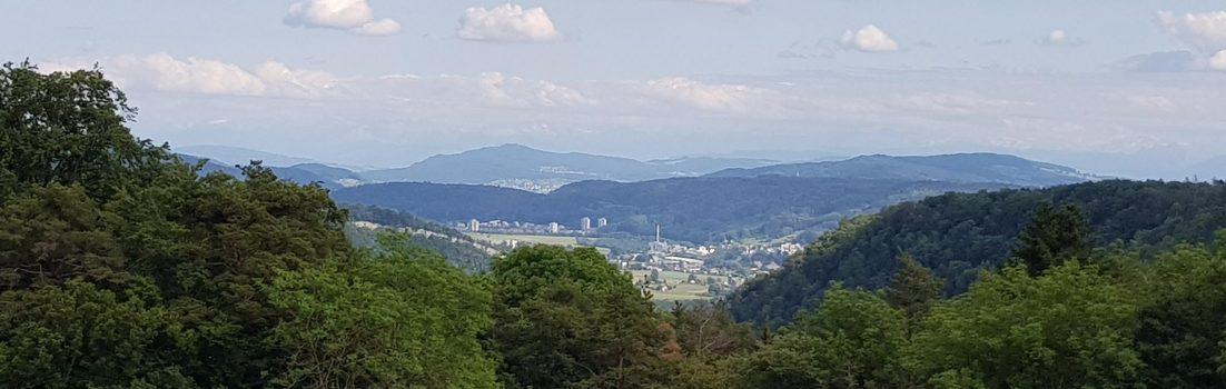 Blick vom Rotberg gegen Süden