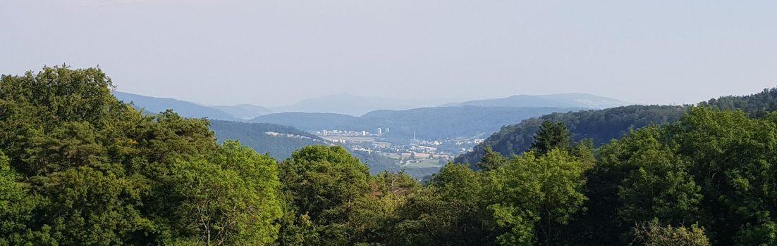 Blick vom Rotberg in Richtung Limmattal