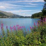 Sils Maria - St. Moritz