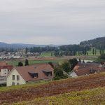 Birrfeld-Bünztal-Aatal-Aaretal