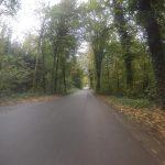 Unterwegs im herbstlichen Reusstal