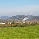Blick über das Schinznacherfeld hinüber zur Habsburg