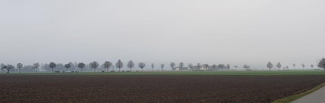 Nebel im Birrfeld