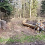 Sitzgruppe mitten im Wald