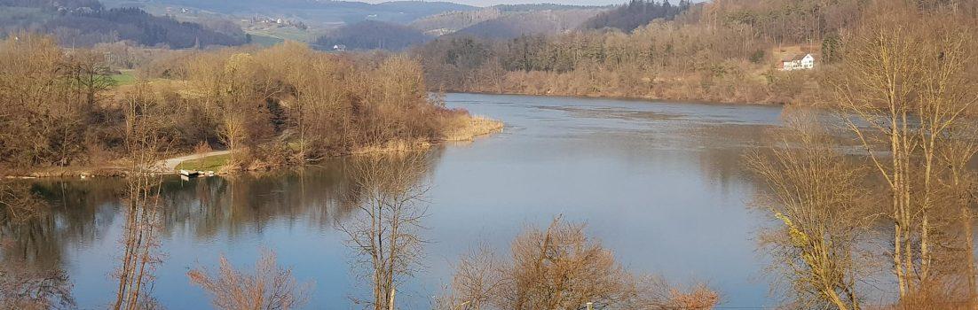 Rhein beim Rümikon