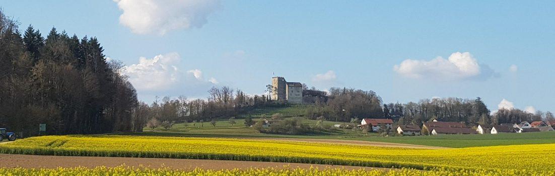Schloss Habsburg
