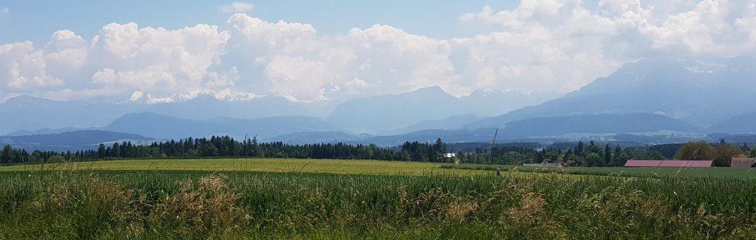 Blick zu den Alpen, zwischen Seetal und Suhrental