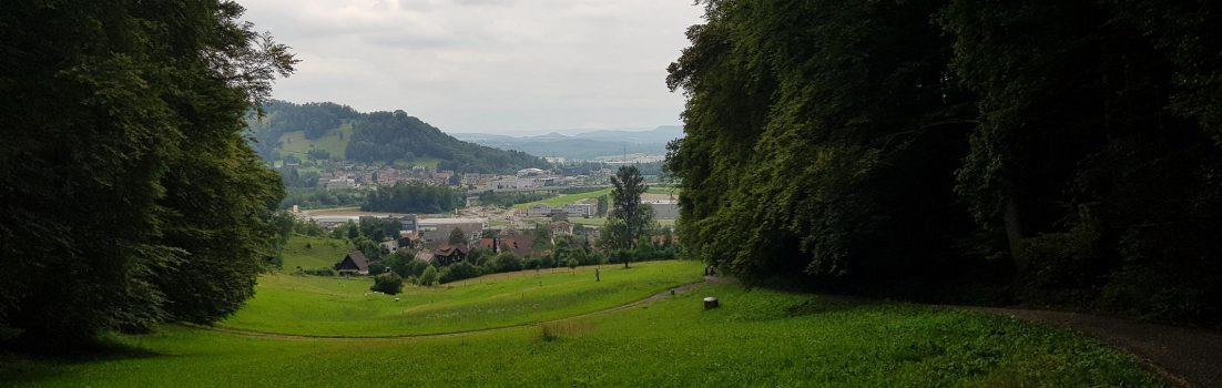Blick über Mägenwil, Schloss Brunegg