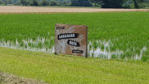 Aargauer Reis