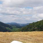 Saalhöhe, um den Jurapark